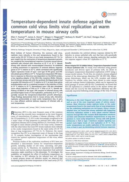 ライノウイルスと体温.jpg