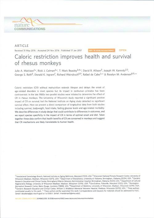 猿の寿命とカロリー制限.jpg