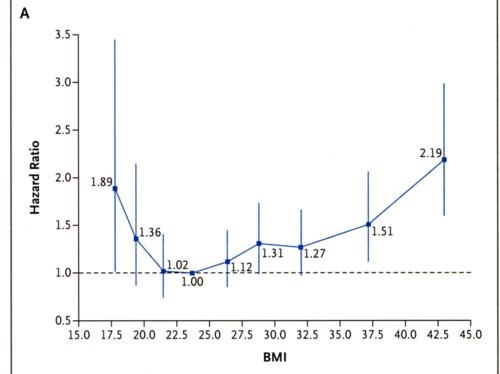 黒人のBMIと死亡率グラフ.jpg