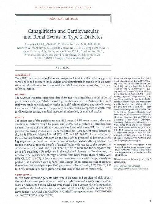 カナグリフロジンの効果と安全性.jpg
