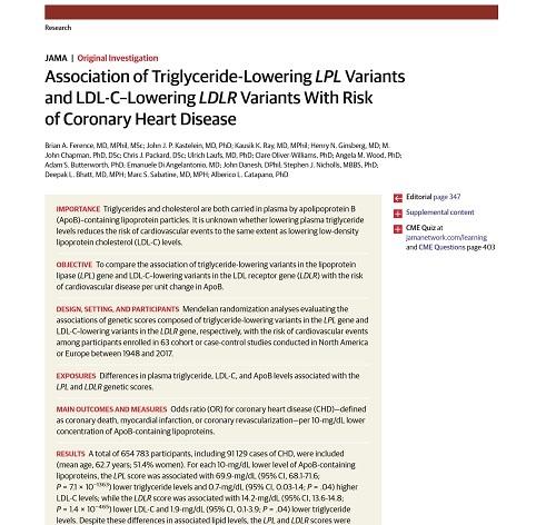 コレステロールと中性脂肪降下療法の差.jpg