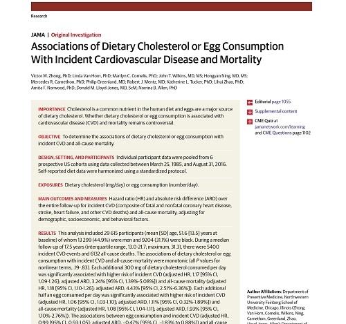 コレステロールの摂取量と心血管疾患リスク.jpg