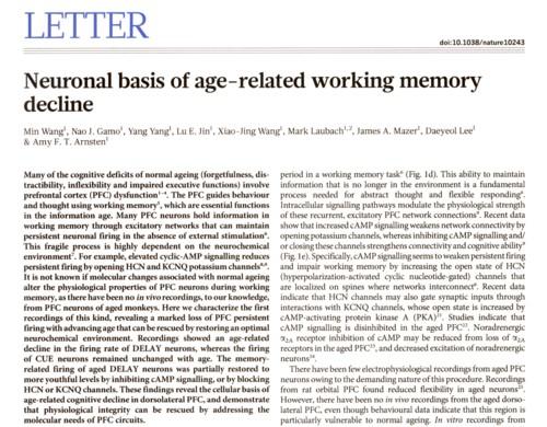 年齢による記憶力低下.jpg