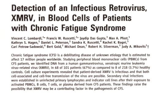 慢性疲労症候群とウイルス論文.jpg