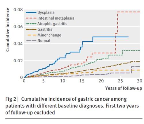萎縮性胃炎から胃癌発症のリスクの図.jpg
