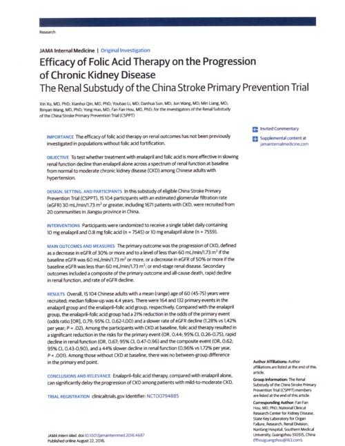 葉酸のサプリメントの腎機能予防効果.jpg