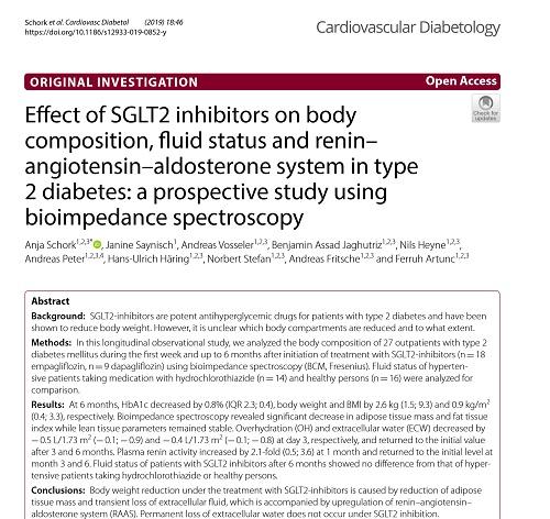 SGLT2阻害剤と体重組成の変化.jpg