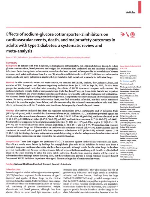 SGLT2阻害剤のメタ解析.jpg